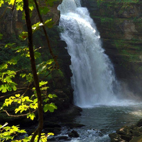 cascade chute d'eau printemps saut du doubs pays horloger