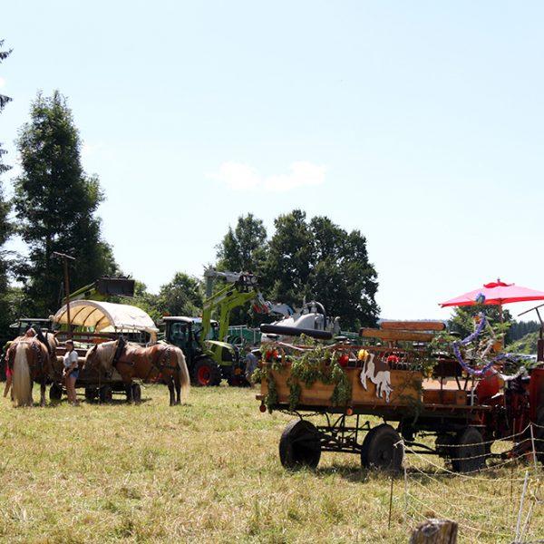 dimanche a la ferme agriculteurs fete