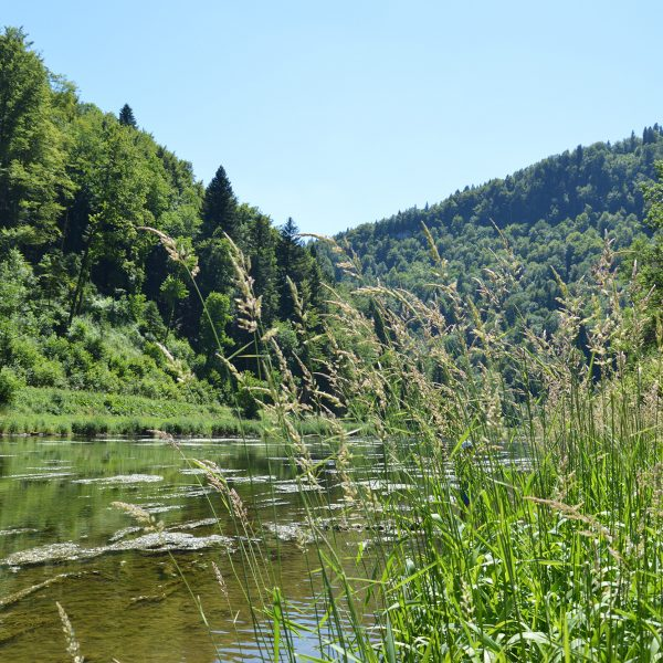 doubs vallée rivière pays horloer jura