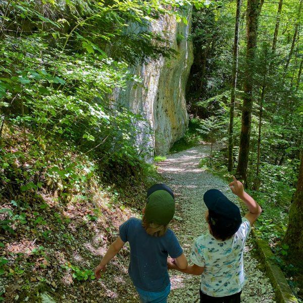 forêt famille echelles de la mort nature