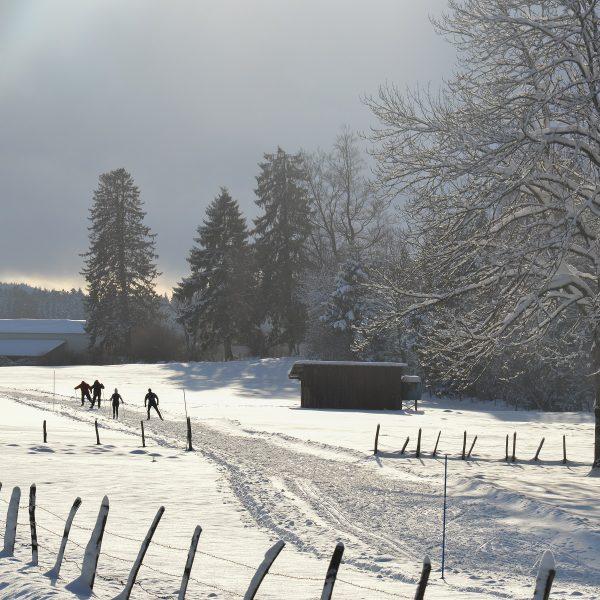 neige ski de fond combe saint pierre pays horloger doubs jura