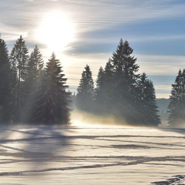 hiver neige gardot sapins pays horloger haut doubs jura