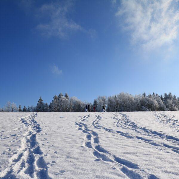 hiver neige raquette pays horloger