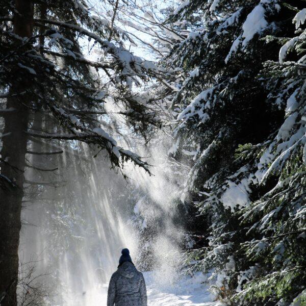 neige hiver combe saint pierre raquette balade pays horloger haut doubs jura